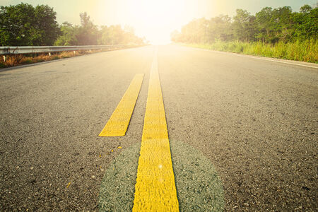 palm lined: Road With Painted Yellow Line. Stock Photo