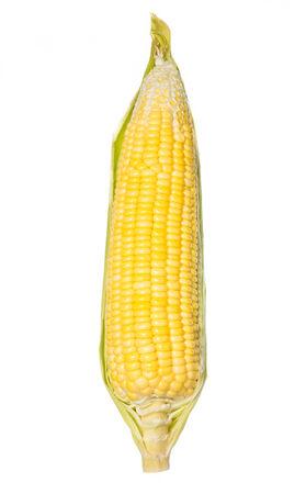 Golden sweet corn isolated on white background. photo