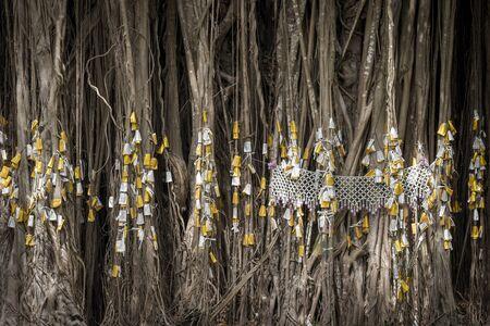 sacrificio: Primer plano de las ra�ces del �rbol de higuera de Bengala con el sacrificio, la cultura tailandesa