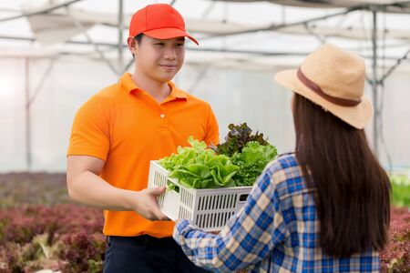 Delivery man taking food basket from the green house farm delivering to customer - grocery shopping service concept