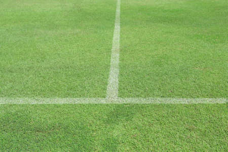 Green grass white line football pitch Stock Photo