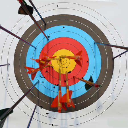 archery target: arrows hit target, successful concept