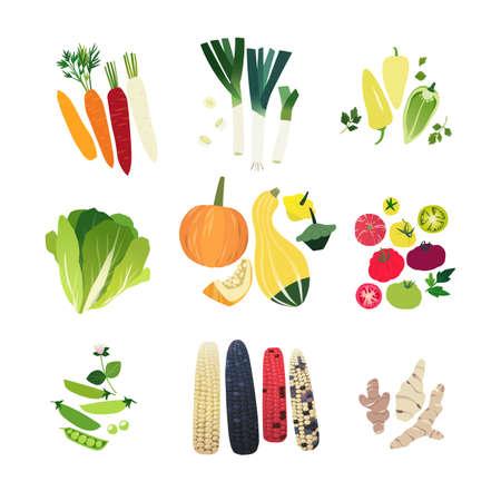 Clip art vegetable set.