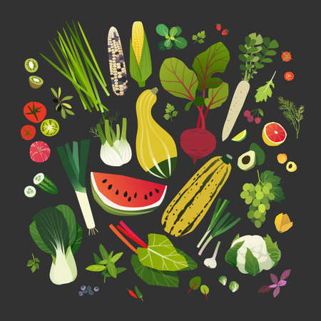 Collection of fruits, vegetables, leafy greens and common herbs Vector illustration. Ilustração
