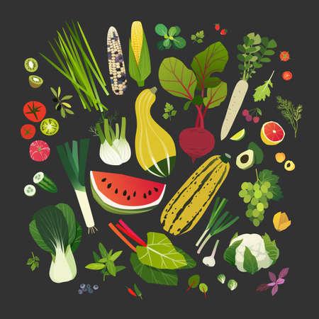 Sammlung Obst, Gemüse, Blattgemüse und allgemeine Kräuter Vector Illustration.