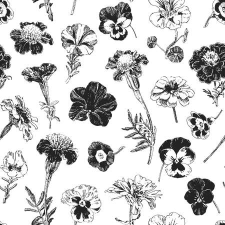 Botanical graphics, seamless pattern with isolated hand drawn flowers such as marigold, petunia, pansies and anemone
