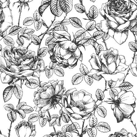Seamless pattern with ink drawn roses