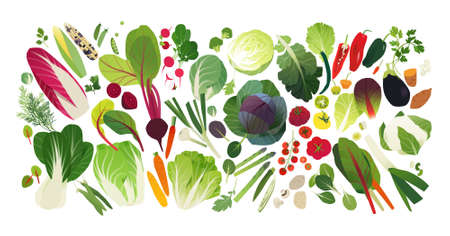 Vegetable and herb icons, food background  イラスト・ベクター素材