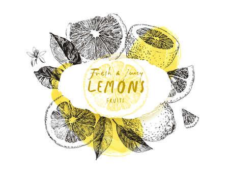 Hand drawn lemon fruits, frame with vintage illustrations, background for label design
