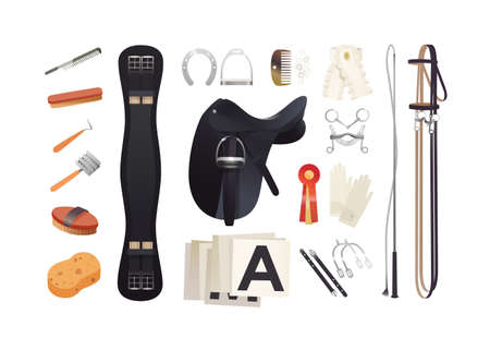 Equestrian sport items, dressage harness essentials and horse grooming tools Illustration