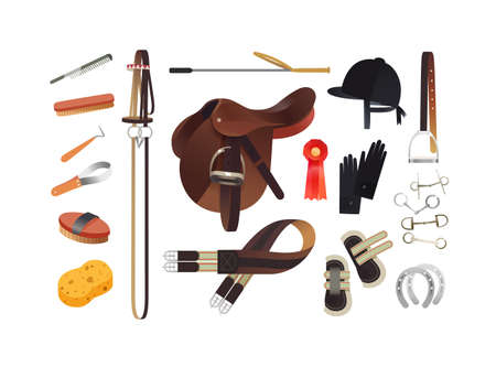 Equestrian sport items, English horse riding essentials and horse grooming tools