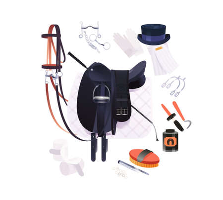 Equestrian scene, dressage riding set, vector illustration of horse grooming tools and riding accessories