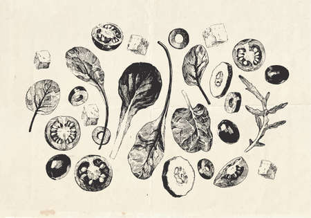 Vintage hand drawn illustration of summer salad with feta cheese, sliced vegetables and leafy greens