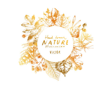 Collection of hand drawn botanical elements, leaves, berries, seeds and nuts