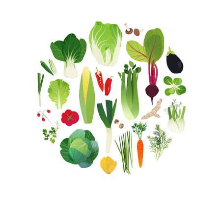 Vegetable clip art, food art illustration, circle shaped set, cook book design elements