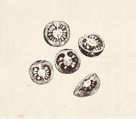 Hand drawn set of sliced cherry tomatoes, vegetable illustration Vettoriali