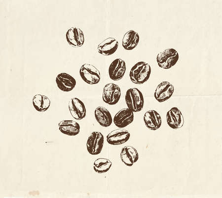 Hand drawn coffee beans, vintage style graphic illustration