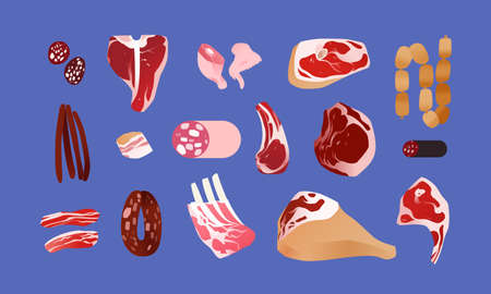 Different meat cuts. Food concept illustration, raw meat vector icons
