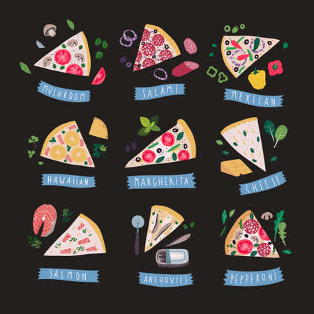 Collection of various pizza slices, clip art vector illustration