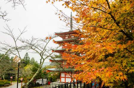 chureito: Chureito Pagoda during autumnto