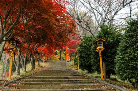 chureito: Visit Chureito Pagoda stairs during autumn Stock Photo
