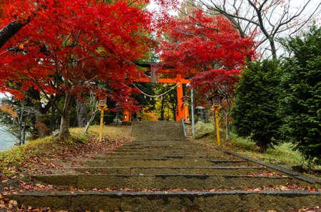 chureito: Visit Chureito Pagoda stairs during the fall