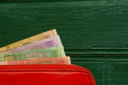 Red purse on a green background
