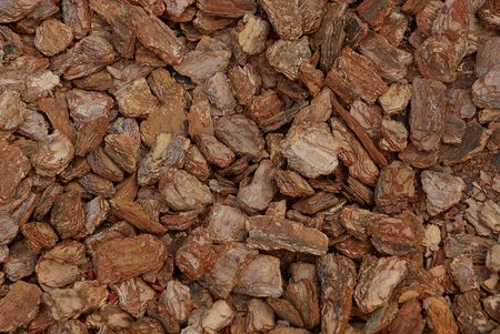 Brown wood texture of fine dry sawdust Stock Photo