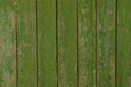 Green texture of old wooden fence boards Stock Photo