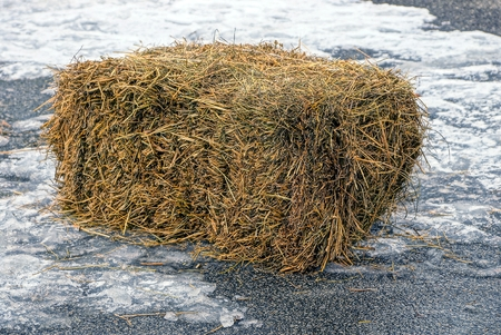 Mop dry hay in the courtyard on the ice