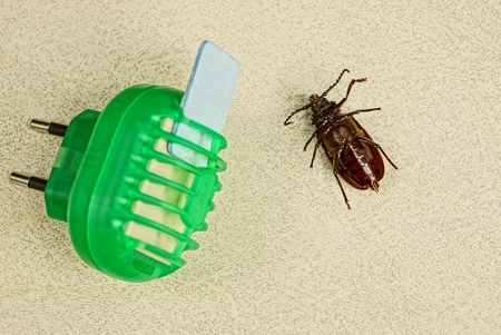 fumigador: Electric insect protection device and brown beetle