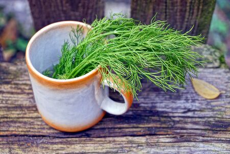 A bunch of green dill in a cup on a gray board Stock Photo