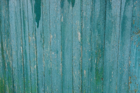 gray green wood texture from wet fence boards