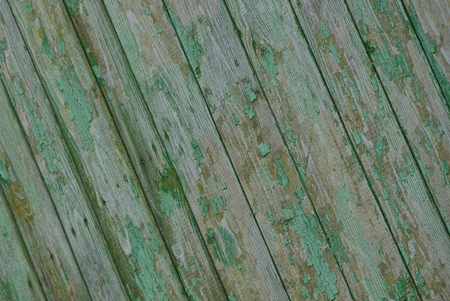 green wooden texture from wet fence boards