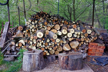 yard with logs and firewood