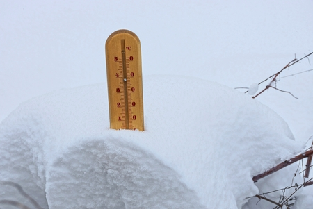 brown wooden thermometer in the snowdrift of the snow in the branches of the plants in the winter garden