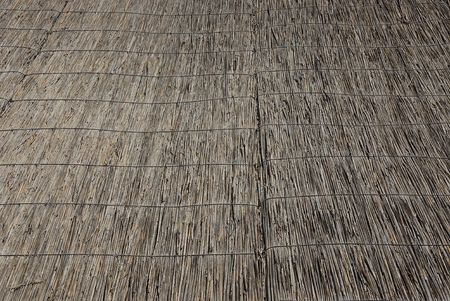 gray vegetative texture of dry reed on the roof Stockfoto