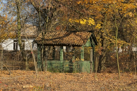 old green wooden gazebo in autumn park