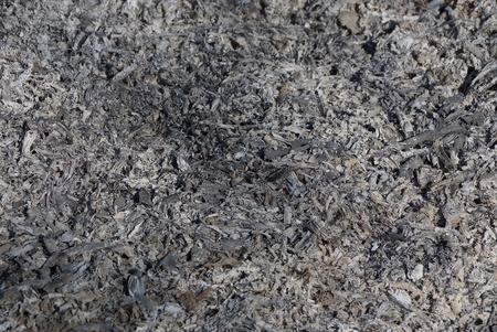 gray natural texture of campfire Stock Photo