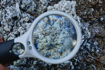 magnifier increases gray white mineral on earth
