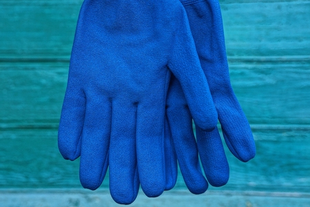 two blue work gloves hanging against a green wall