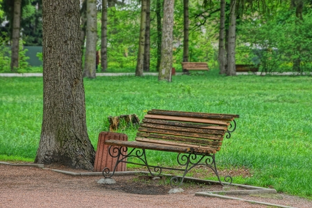 brown wood bench among green grass and trees Stock Photo