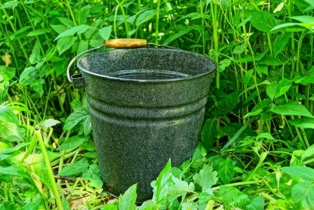black metal enamelled bucket of water stands in green grass