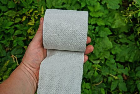 hand holds a gray toilet paper roll on a background of green leaves