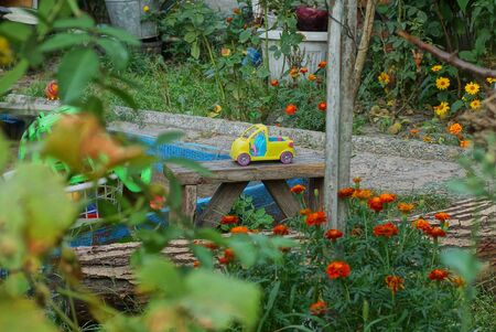 colored plastic toy on a table among green vegetation and flowers