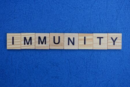 word immunity made from wooden gray letters lies on a blue background