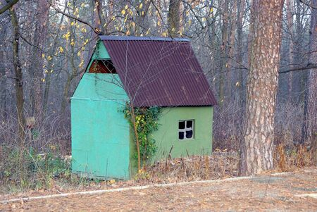 a model of a green plywood house under a brown slate roof in a pine forest