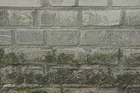 gray texture of dirty bricks on an old wall