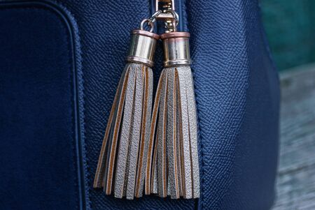 decor of two brown gray tassels on a lace zip made of leather and metal