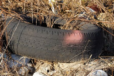 garbage from one old black car tire overgrown with gray dry grass in nature